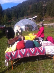 Horses and healing naturally.