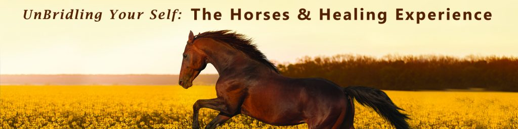 Horses_banner_and_text